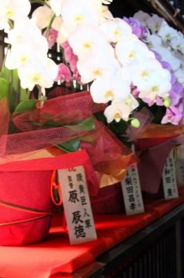 20111221_0469-1.jpg