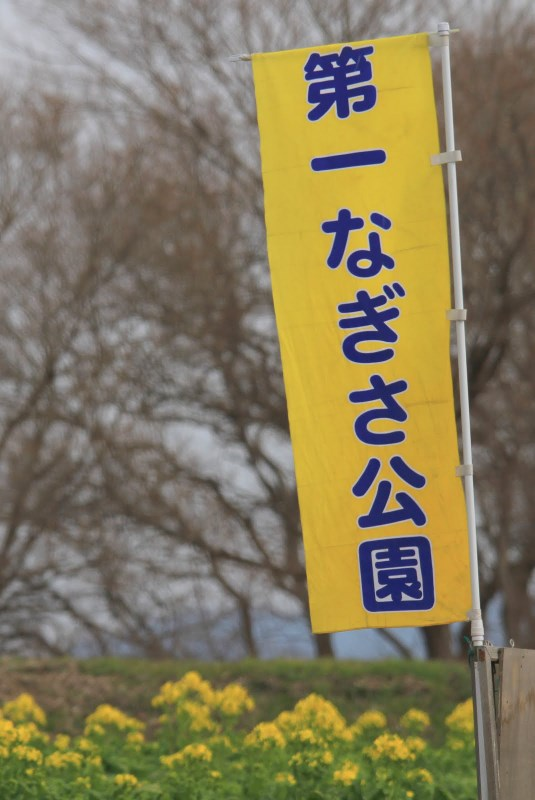 20120115_0141.jpg