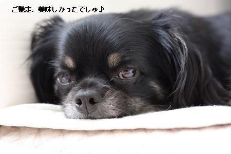 IMG_2148・2 コピー