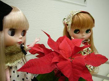 美容院 クリスマス 2013  2