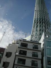 sky tree2