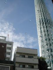 sky tree3
