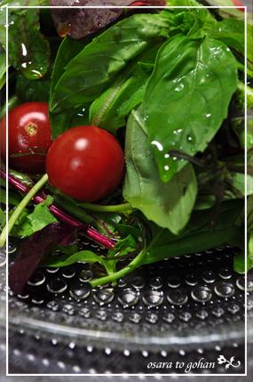生バジルとトマト