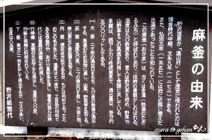 nozawa_1_20120322153332.jpg
