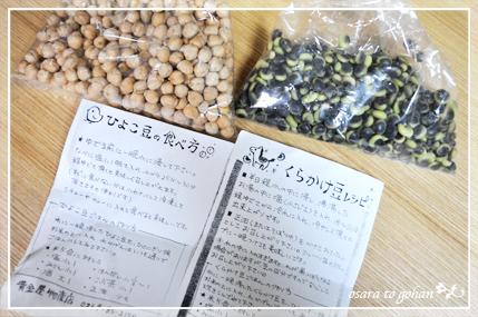 nozawa_6_20120322153329.jpg