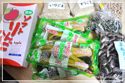 nozawa_7_20120322153509.jpg