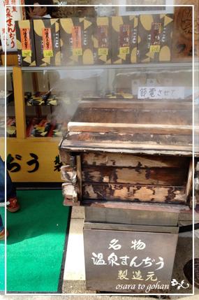 nozawa_8_20120322153509.jpg