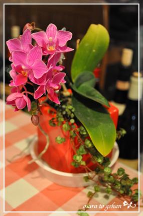 アンクルのお花