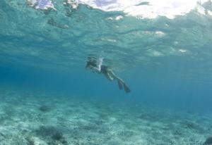 sf+Kiyomi+swimming-1_convert_20100911162951.jpg