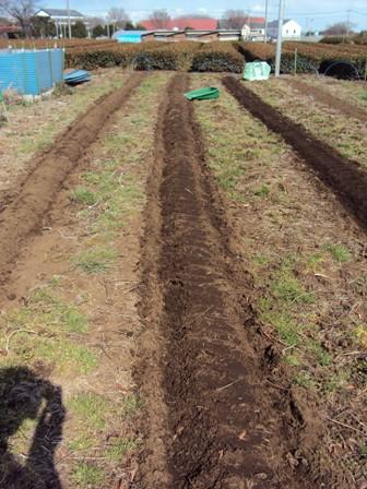 土をかけ圧着
