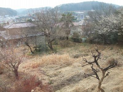 s-農家料理高宮 (10)