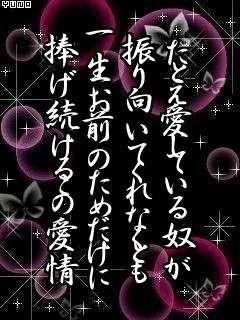 304f5241_1257088512971.jpg