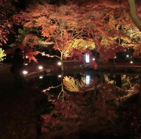 曽木公園 2
