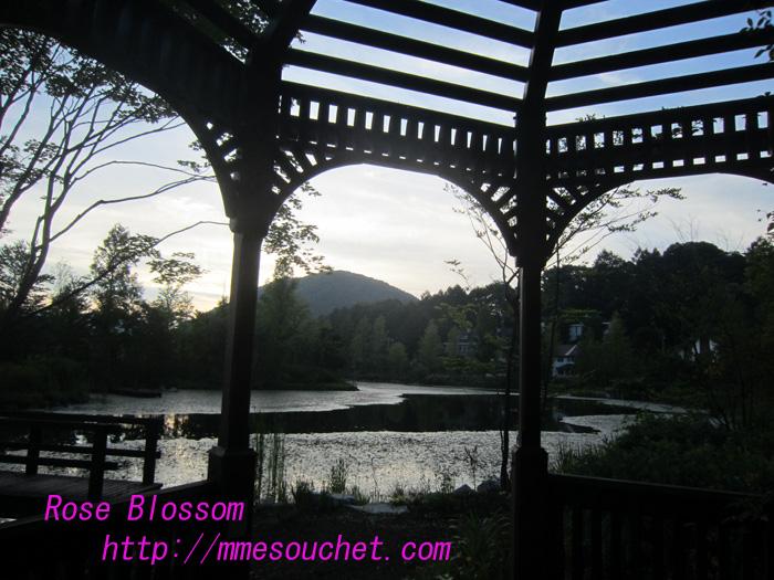2010081511.jpg