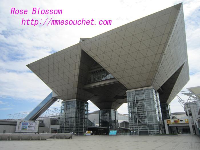 bigsite20100808.jpg