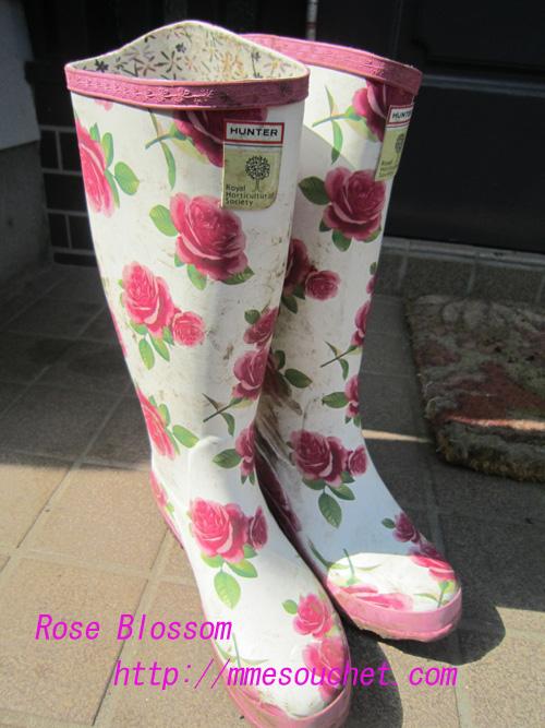 boots20100901.jpg