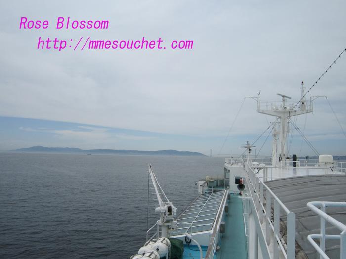 deck20100807.jpg
