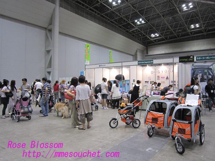 dogspace20100808.jpg