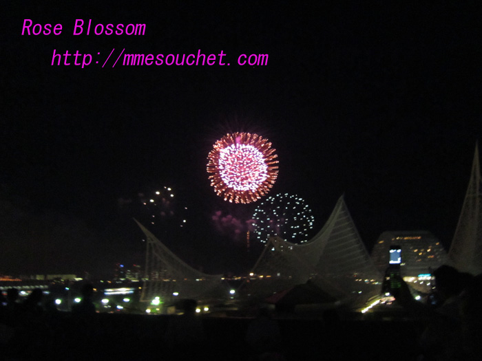 hanabi201008074.jpg