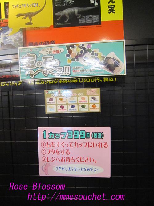 ishisukui20100910.jpg