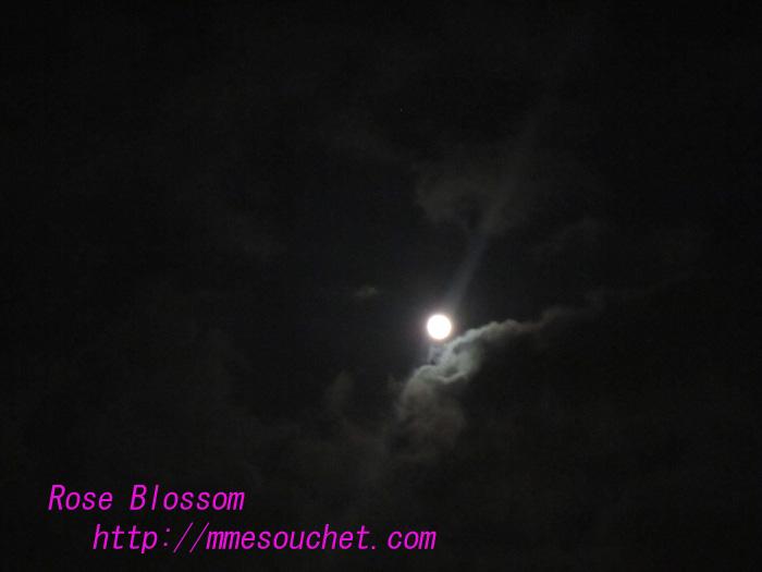 moon20100824.jpg