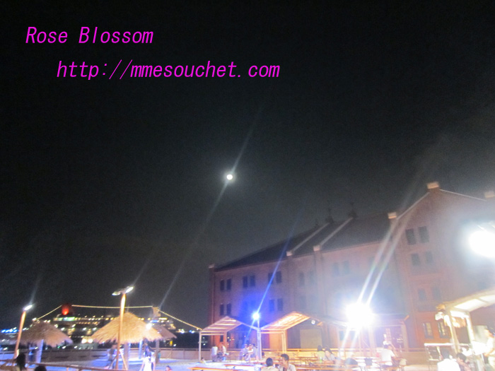 moon201008243.jpg