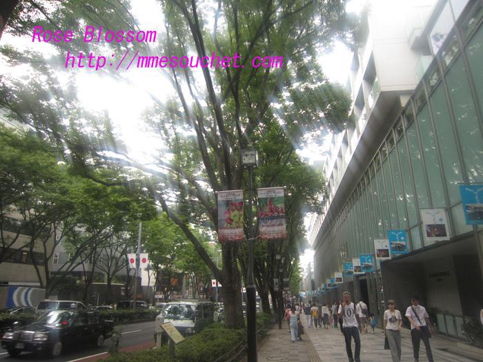 omotesando20100821.jpg