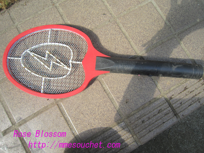 racket20100901.jpg