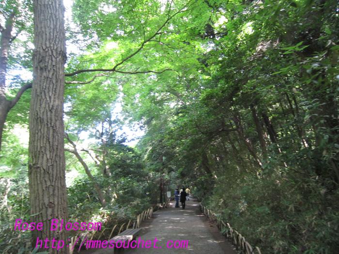 road20100811.jpg