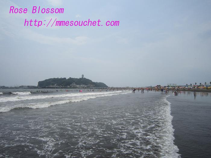 sea201008141.jpg
