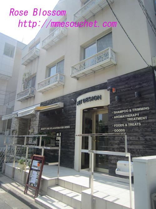 shop20100826.jpg