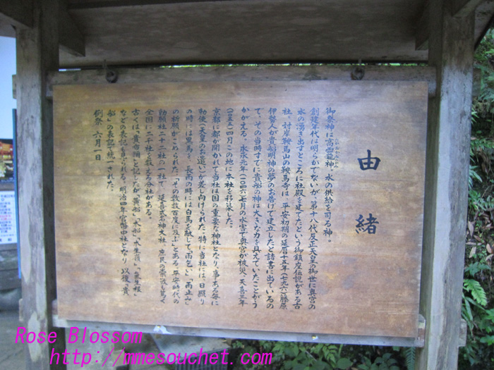 yuware20100804.jpg