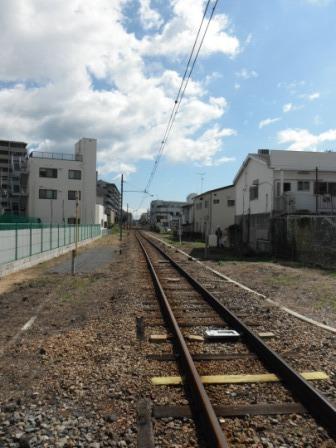2011_10050057.jpg