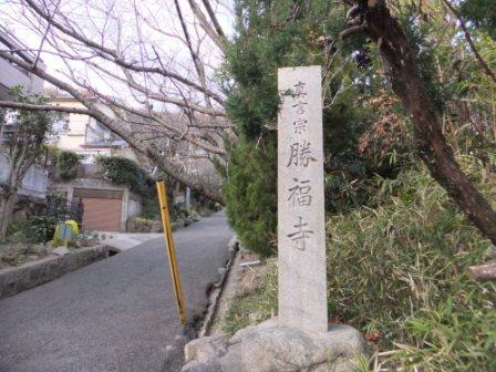 2011_12290029.jpg