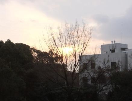 2012_01040047.jpg