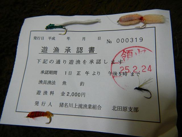 DSCN3761.jpg