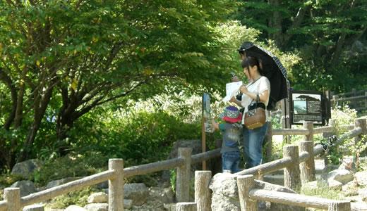 夏の六甲山は天国です-1