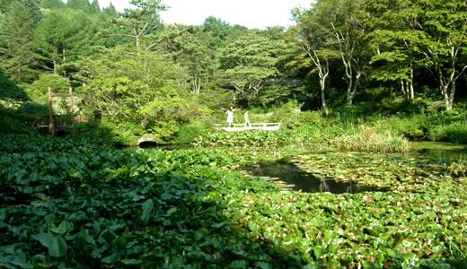 夏の六甲山は天国です(3)-1