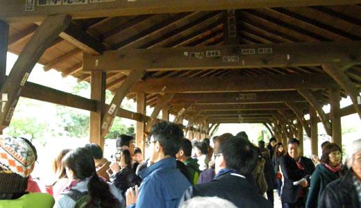 京都の秋2013(3)-2