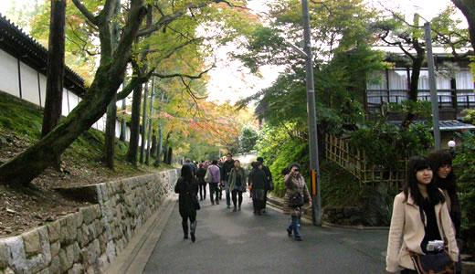 京都の秋2013(3)-3