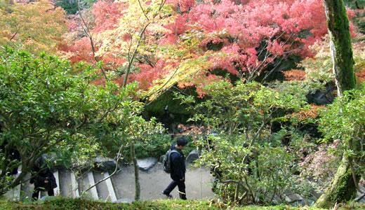 京都の秋2013・東福寺(3)-1