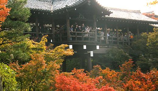京都の秋2013・東福寺(3)-2