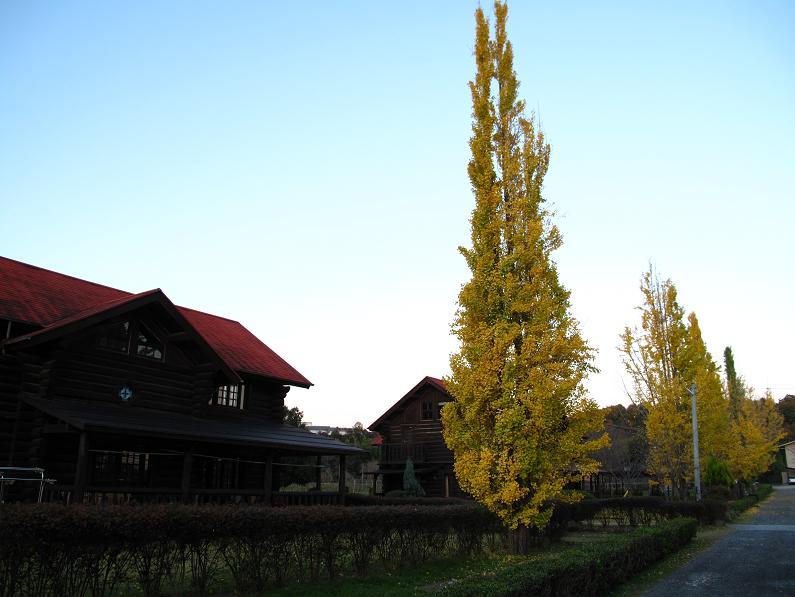 修道院03