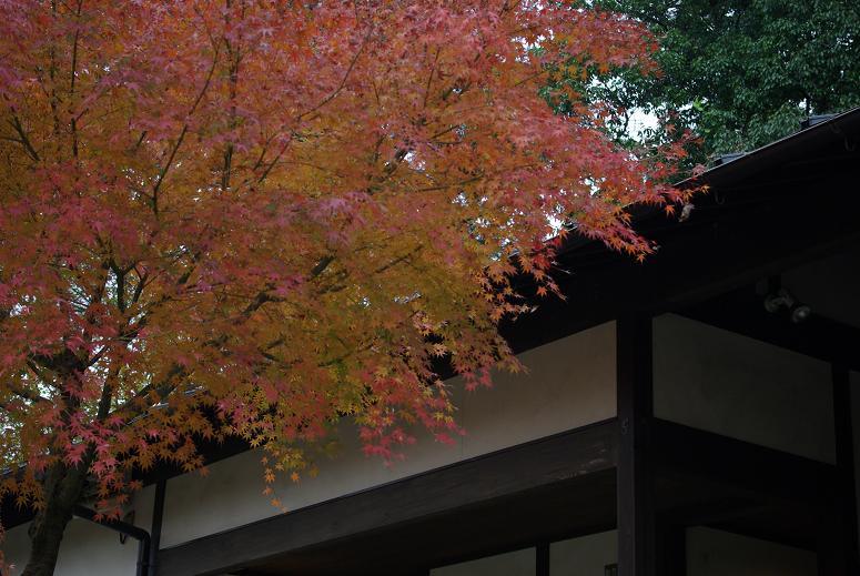 日本昭和村04