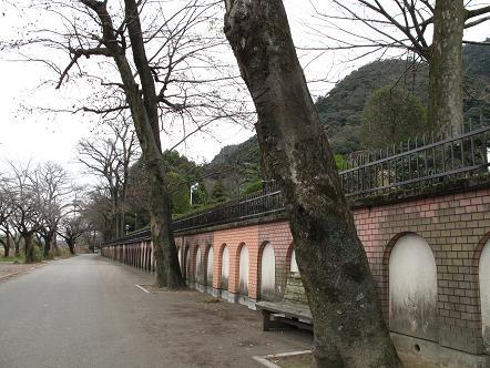 金華山01