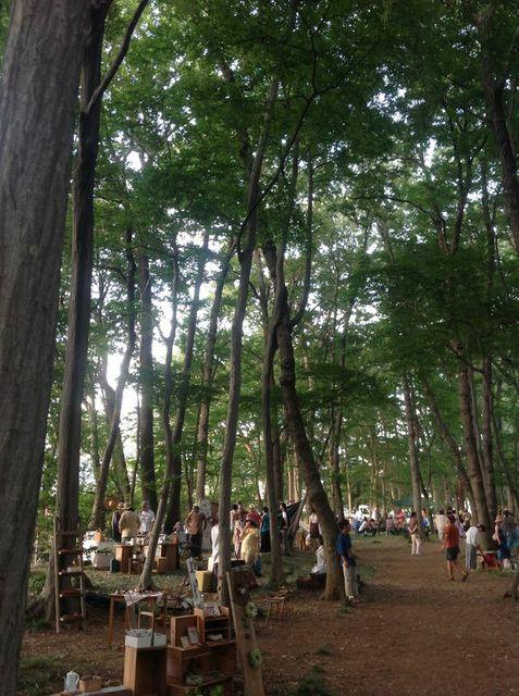 雑木林 北本 6