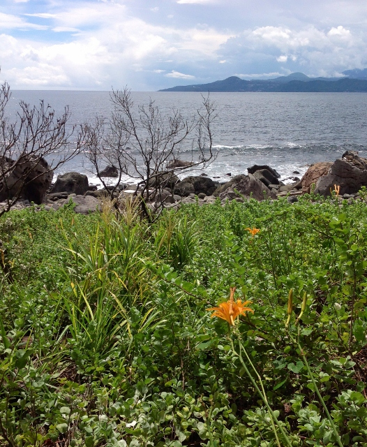 初島の海3
