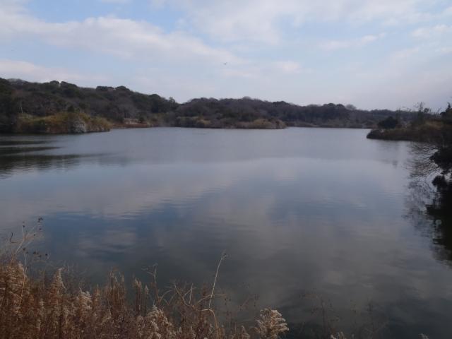 12鵜ノ池