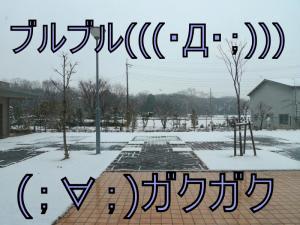 P1110084_convert_20130212143918.jpg