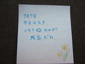 DSCF8815.jpg